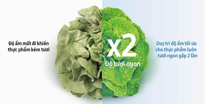 Ngăn rau quả lớn Big Box có khả năng giữ ẩm tối ưu