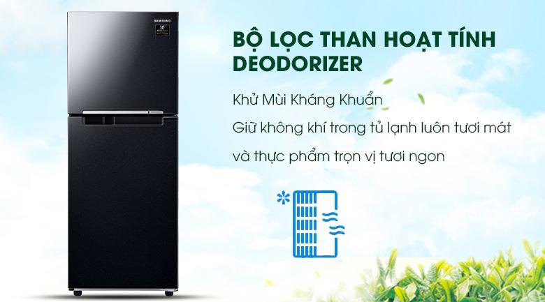 Bộ lọc than hoạt tính Deodorizer - Tủ lạnh Samsung Inverter 208 lít RT20HAR8DBU/SV
