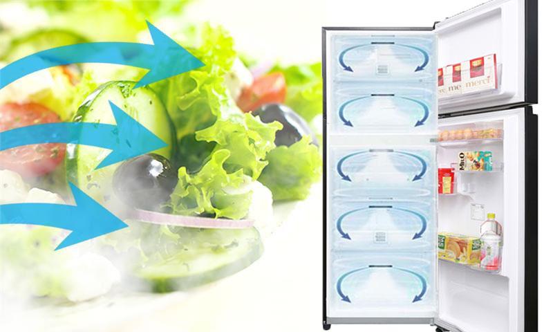 Luồng khí lạnh vòng cung - Tủ lạnh Toshiba Inverter 330 lít GR-AG39VUBZ XK1