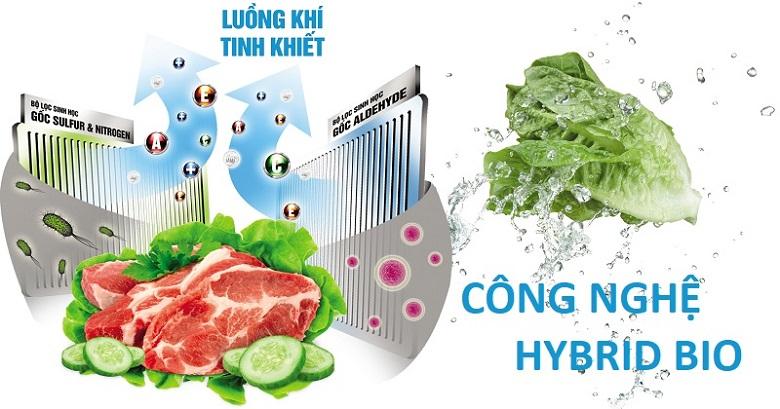 Công nghệ Hybrid Bio - Tủ lạnh Toshiba Inverter 330 lít GR-AG39VUBZ XK1