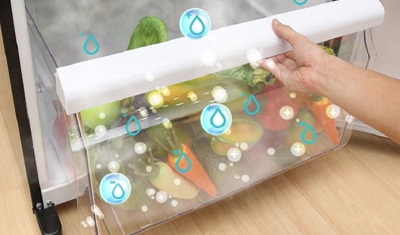 Ngăn rau quả - Tủ lạnh Toshiba Inverter 330 lít GR-AG39VUBZ XK1
